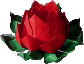 Лучшая модель оригами цветка  лотоса