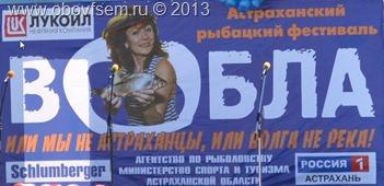 вобла 2013